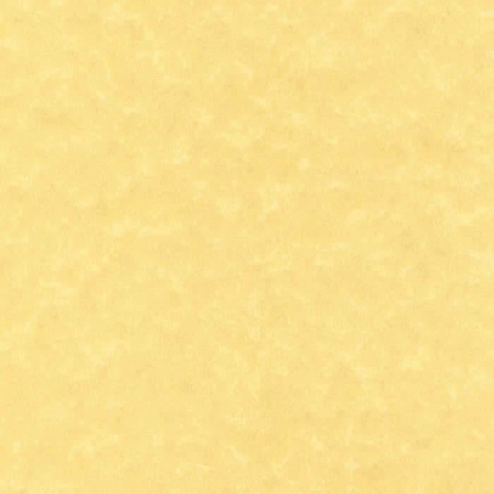 PAPEL APLI TEXTURA PERGAMINO DORADO 25 HOJAS A4 95 GRS. (SCL2059)